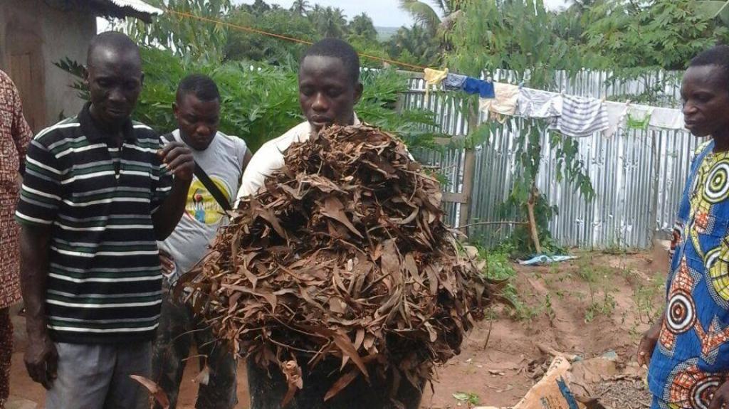 Un compost magique au Bénin